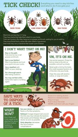 Infographic-Ticks-2015-800px